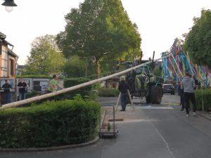Maibaum aufstellen 2019 in Buschhoven